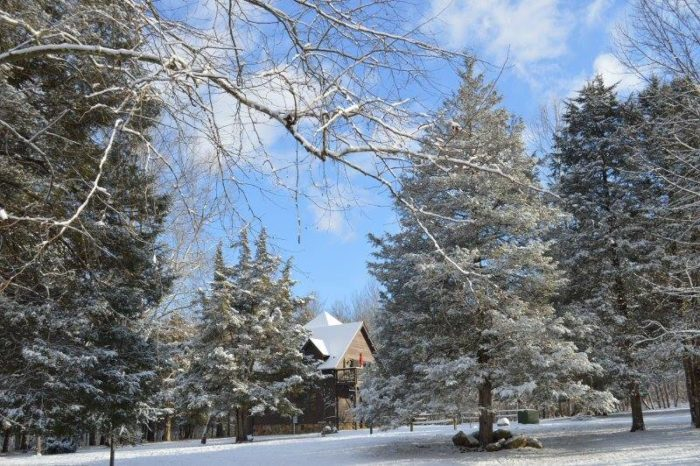 Here Are 9 Wonderful Places To Visit In Virginia This Winter