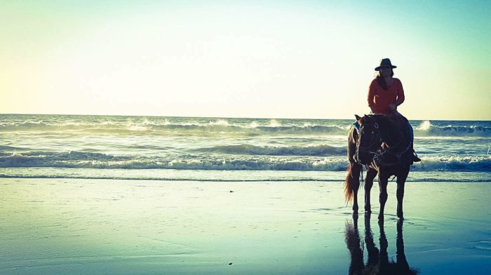 If So You Ll Love This Refreshing Outdoor Adventure That Will Take Out On An Oceanside Trail For A Horseback Ride Never Forget