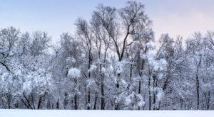 10 Enchanting Iowa Towns That Feel Like You've Fallen Into A Snow Globe