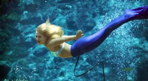 Your Childhood Dream Of Becoming A Mermaid Is Now Possible At This One Place In Florida