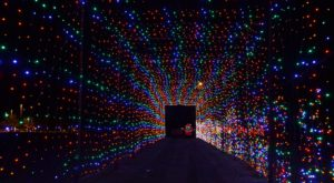 New Jersey's Tunnel Of Lights Will Positively Dazzle You This Year