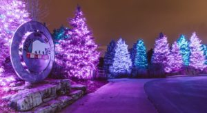 Visit These 9 Magical Christmas Attractions In Michigan Before Santa Arrives