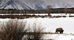 The Scenic Winter Drive In Idaho That Will Leave You Mesmerized