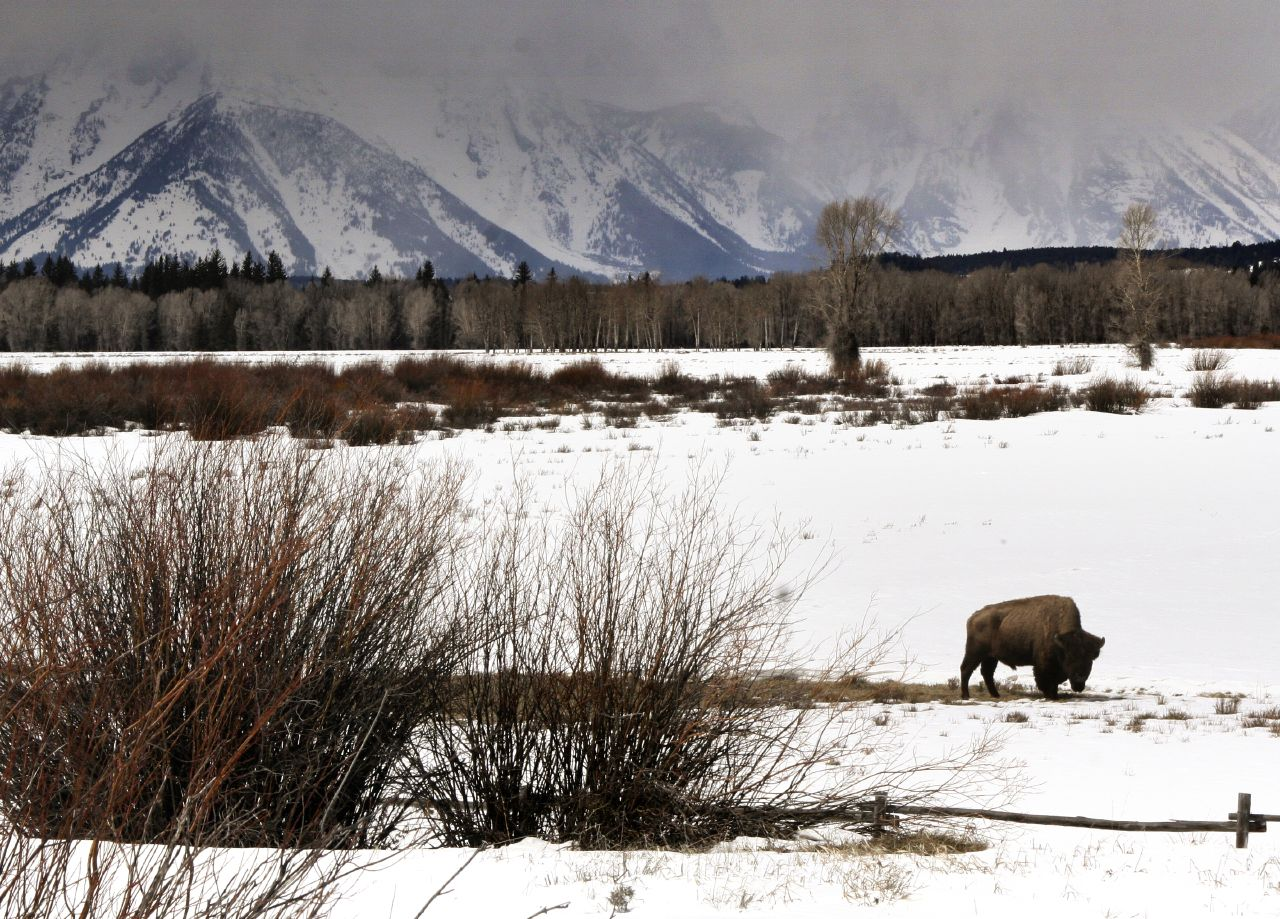 The Scenic Winter Drive In Idaho That Will Leave You