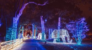 9 Christmas Light Displays Around Detroit That Are Pure Magic