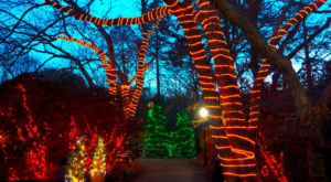 You Must Visit These 10 Awesome Places In Massachusetts This Winter
