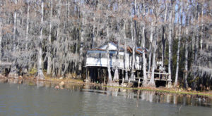 This Creepy Spot Deep In The Woods Of Texas Is Like Something Out Of A Horror Movie