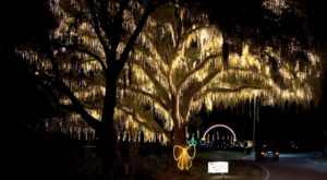 You'll Love The Dreamy Ride Through The Largest Drive-Thru Light Show In South Carolina