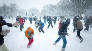 10 Things No One Tells You About Surviving A DC Winter