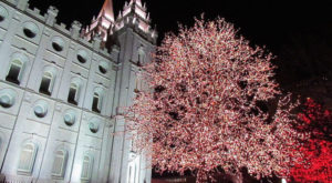 The Mesmerizing Christmas Display In Utah With Over 800,000 Glittering Lights