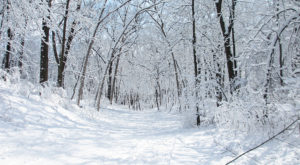 13 Reasons No One In Their Right Mind Visits Wisconsin In The Winter
