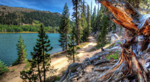 11 Of The Greatest Hiking Trails On Earth Are Right Here In Nevada