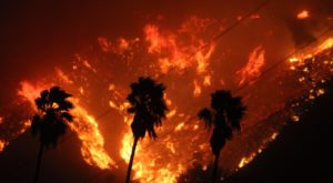Wildfires Are Raging Through Parts Of Southern California And It's Truly Heartbreaking