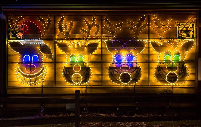 11 Magical Light Displays In Chicago You Can T Miss This