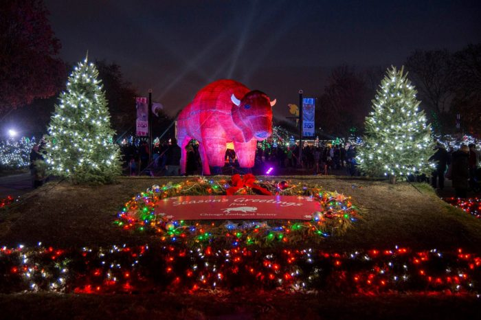 Holiday Magic Is The Event Of The Year For Brookfield Zoo.