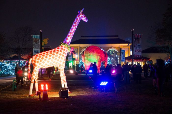 Facebook/Brookfield Zoo - Brookfield Zoo In Chicago Has Over 1 Million Holiday Lights