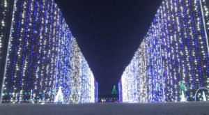 10 Festive Holiday Traditions You'll Only Get If You're From Charlotte