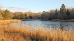 This Hidden Spot In Rhode Island Is Unbelievably Beautiful And You'll Want To Find It