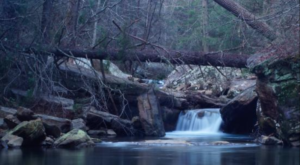 This Tennessee Hike Has Been a State Secret for Over a Century