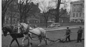 12 Very Rare Photos Taken During WWII In Boston