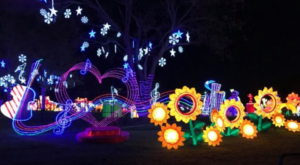This Magnificent Washington Festival Will Light Up Your Night