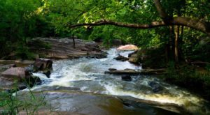 The Alabama State Park That Has Something For Everyone… Even A Spectacular Waterfall