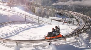 Not Many People Realize That The Longest Alpine Coaster In The Country Is Right Here In Colorado