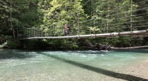 The Stomach-Dropping Suspended Bridge Walk You Can Only Find In Washington