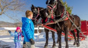 Embrace the Magic of the Season on These 7 New Hampshire Sleigh Rides