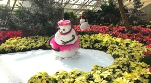 Every Day Is A Snow Day At This Epic Indiana Indoor Winter Wonderland