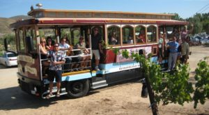 The Charming Wine Tour In Southern California That You Can Experience On A Cable Car