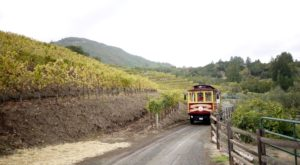 The Northern California Wine Trolley Tour You'll Absolutely Love