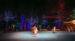 The Christmas Safari In Alabama Everyone Should Visit This Holiday Season