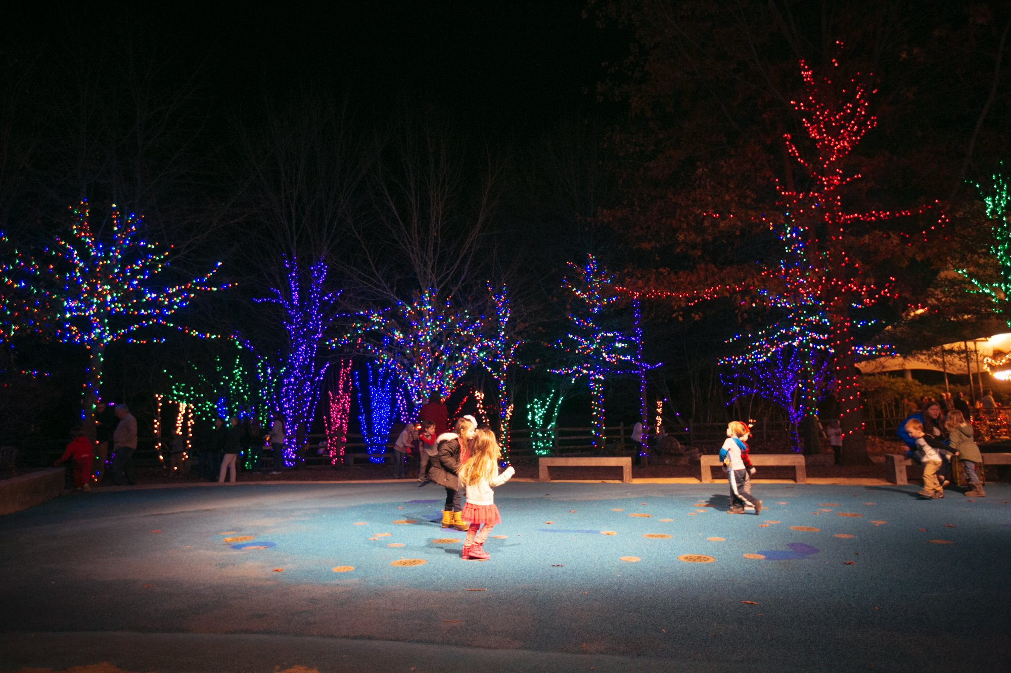 Everyone Should Visit ZooLight Safari In Alabama This Holiday Season