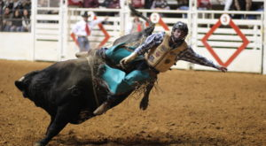 You Could Easily Spend All Weekend At This Enormous Fort Worth Stock Show & Rodeo