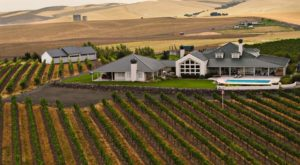 This Perfect Washington Vineyard Has Amazing Wine And Even Lets You Spend The Night