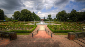 Why You Need To Visit This Unassuming Rose Garden Hiding In Portland