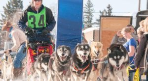 This Small Idaho Town Has Held A Dog Sled Race For The Past 100 Years And It's Amazing