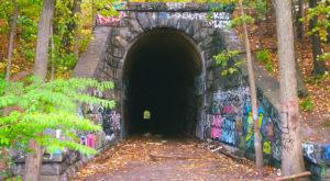 This Amazing Hiking Trail In Massachusetts Takes You Through An Abandoned Train Tunnel