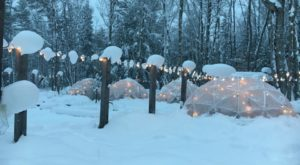 Hang Out In An Igloo At This One-Of-A-Kind Michigan Brewery