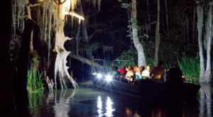 This Nighttime Swamp Tour Will Show You A Whole New Side Of New Orleans