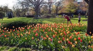 The Secret Garden In Baltimore You're Guaranteed To Love