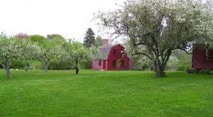 There's Something Special About These 11 Rhode Island Farms From The Past