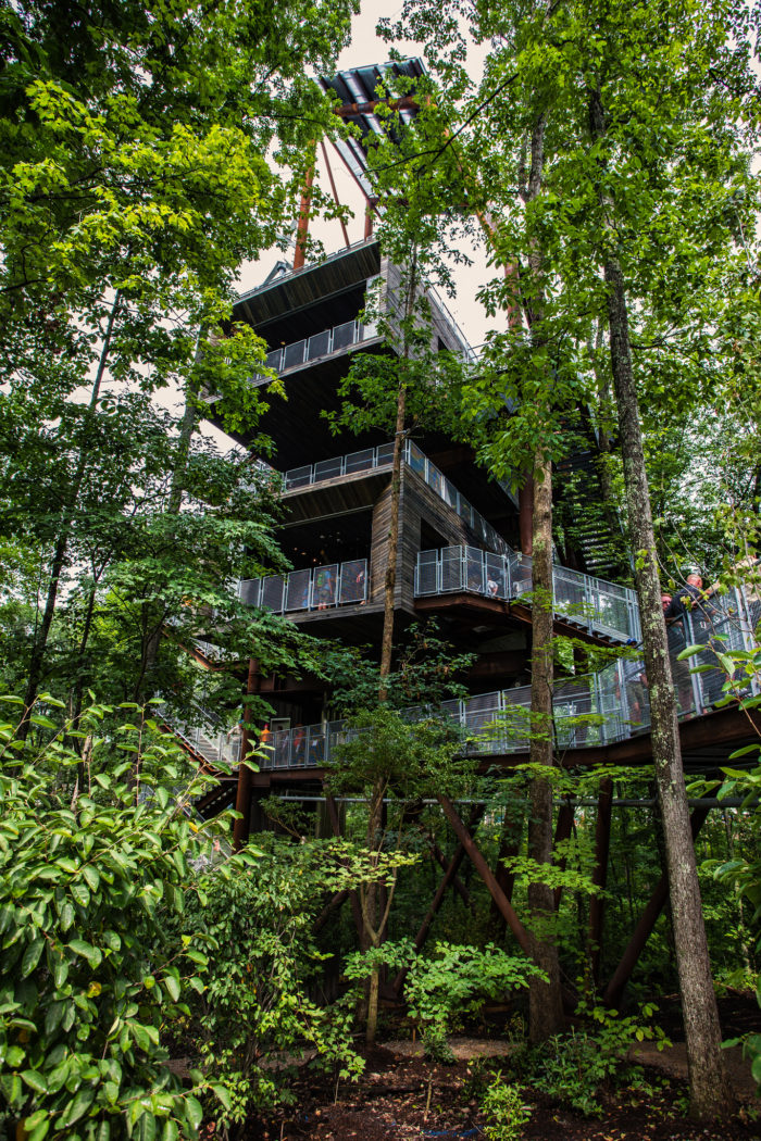 Solar For America >> Summit Bechtel Reserve Has The Best Little-Known Treehouse ...