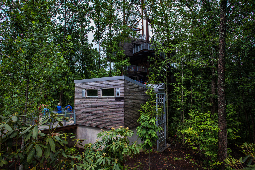 Summit Bechtel Reserve Has The Best Little Known Treehouse