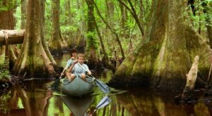 The South Carolina Park That Will Make You Feel Like You Walked Into A Fairy Tale