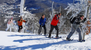 The One Winter Activity Everyone In North Carolina Should Try At Least Once