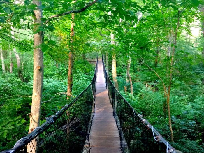 massachusetts places visit bridge knowles frank ma dartmouth suspension river reserve south walk tanya suspended onlyinyourstate stomach