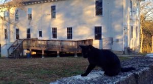 The History Behind This Remote Hotel In Missouri Is Both Eerie And Fascinating