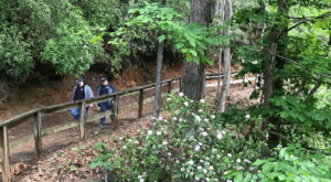This Quaint Little Trail Is The Shortest And Sweetest Hike In South Carolina
